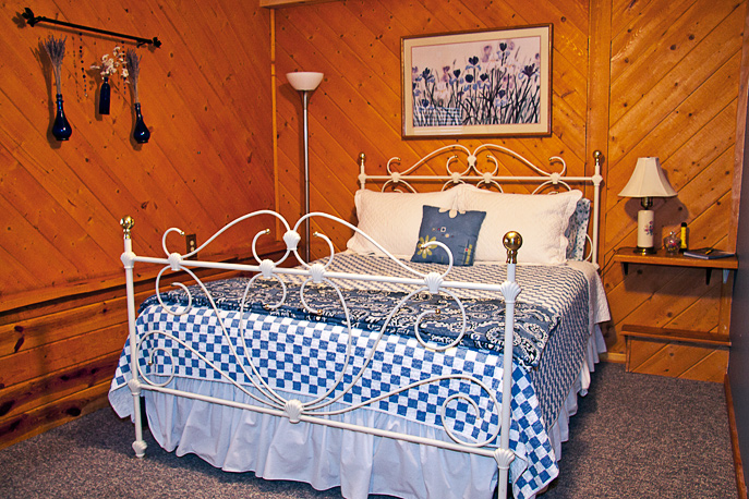 Country Sunshine Bed & Breakfast Columbine Room