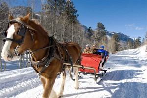 Sleigh Rides at Rapp Corral