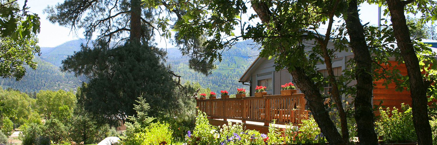 Best Bed And Breakfast In Durango